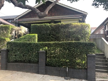 Renting out with online payment: Hidden and Minimalist Front Yard