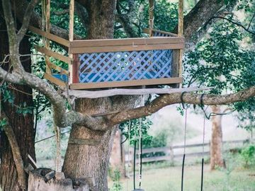 Renting out with online payment: Kids Tree house