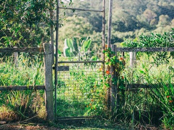 Renting out with online payment: Gate to garden