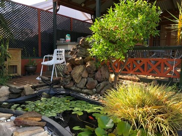 Renting out with online payment: Spacious Garden with a Small Pond