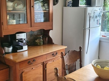 Renting out with online payment: Bright Kitchen with Indoor Plants