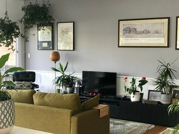 Renting out with online payment: Leafy Living Room