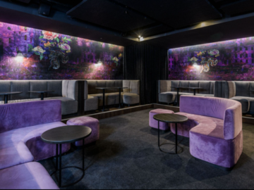 Renting out with online payment: Luxurious Basement Bar in the Heart of the City
